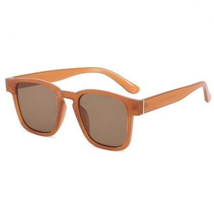 Bruna Retro inspirerade solglasögon till män